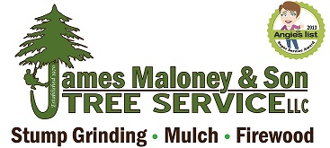 James Maloney & Sons